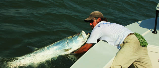 Australian flyfishing outfitters west florida for Fishing jobs in florida